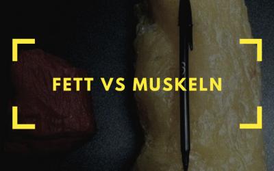 Fett vs. Muskeln